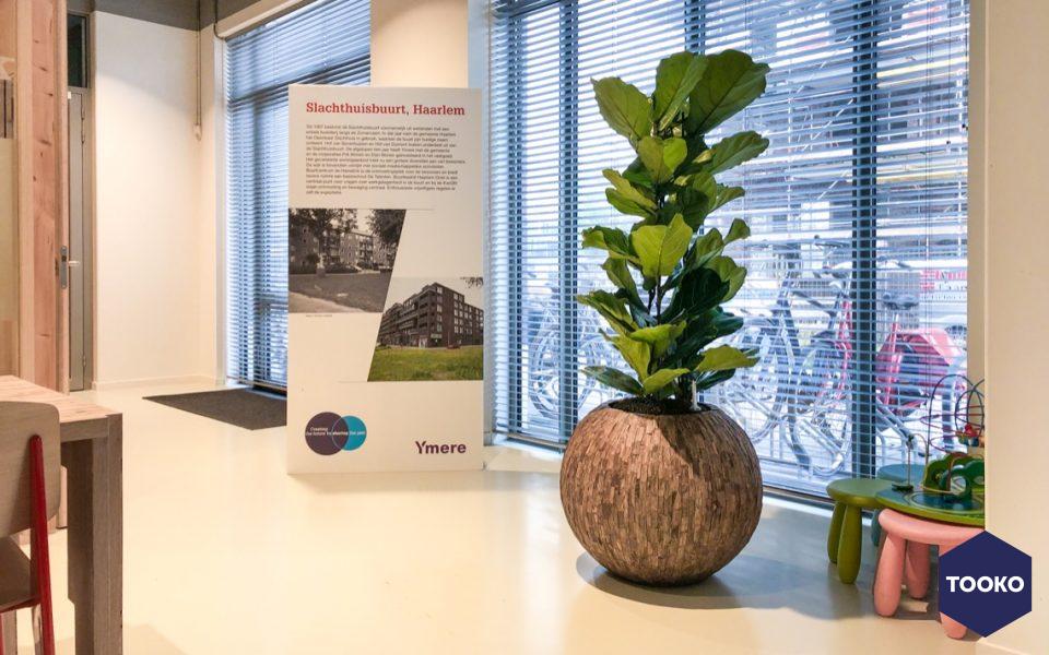 Hoogendoorn Projectbeplanting - INTERIEURBEPLANTING BIJ YMERE