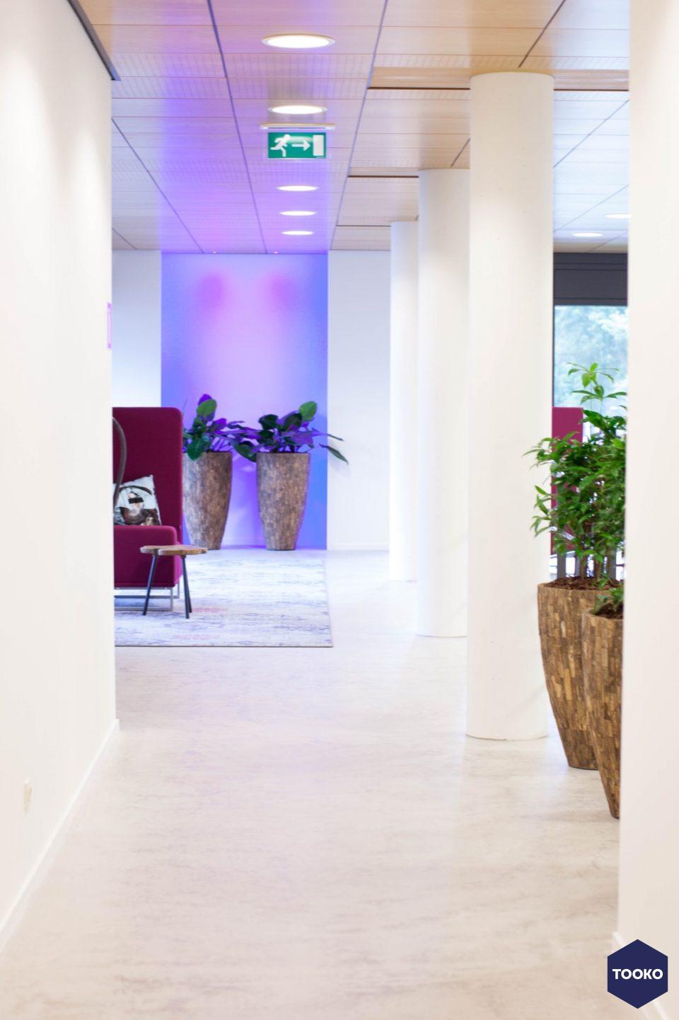 Interieurbeplanting De Klerk - Project Cerebel Group, Esp te Eindhoven