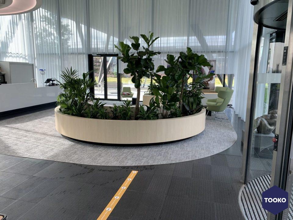 Interieurbeplanting De Klerk - Project Philips op de High Tech Campus Eindhoven
